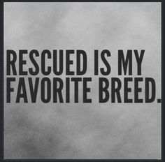 Rescued is best.