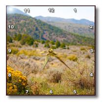 3dRose - Jos Fauxtographee Pine Valley - Rabbit brush in focus with the hillside blurred - Wall Clocks