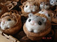 adorable little needle-felted critters in walnut shells :)