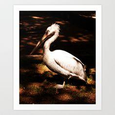 Basking Art Print by Plasmodi Bird, Art Prints, Animals, Art Impressions, Animales, Animaux, Birds, Animal, Animais