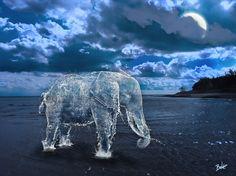 A Splash of Life: Creatures Get Liquefied