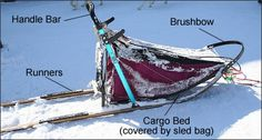 Learn about Dog Sledding and play the game Mush Rush! Great lesson prior to reading Call of the Wild or White Fang Canadian Eskimo, Inuit People, Teaching Kids, Teaching Reading, Teaching Tools, Inspired Learning, Call Of The Wild, Alaskan Malamute, Dog Hacks