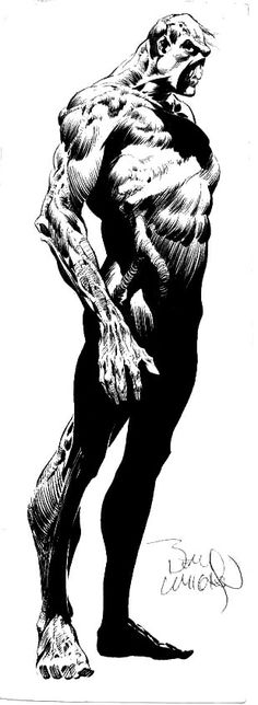 Bernie Wrightson Swamp Thing