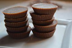 No Guilt, Sugar-Free Carob Chocolates (with SCD white chocolate recipe option)