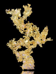 """""""Brilliant specimen of crystalline Native Gold with white Quartz accenting! This is one great looking specimen of Native Gold - definitely one of the finest from the show.  The contrast between the Gold and Quartz is gorgeous and the entire specimen is covered with an intense luster. From the Eagle's Nest Mine, Placer County, California. Measures 8.4 cm by 6.2 cm by 1.5 cm in total size. Price $17,500"""""""