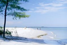 Panama City Florida    The Panama City often called as the mainland paradise, boasts of its being rated as the world's most beautiful beach....