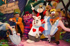 Alice in Wonderland - the gang's all here! Disney Nerd, Disney Parks, Disney Pixar, Disney World Characters, Disney Movies, Face Characters, Disney Stuff, Alice In Wonderland 1951, Alice In Wonderland Characters