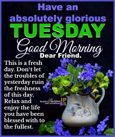 Have an absolutely glorious Tuesday good morning tuesday tuesday images good morning tuesday tuesday quotes and sayings Good Morning Tuesday Images, Tuesday Quotes Good Morning, Good Morning Dear Friend, Cute Good Morning Quotes, Happy Tuesday Quotes, Morning Inspirational Quotes, Good Morning Messages, Good Morning Greetings, Good Morning Wishes