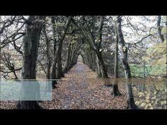 Buchtrailer Mi Ra Ma! #einhorn #SchlossLandestrost #ebook #buch #drachen