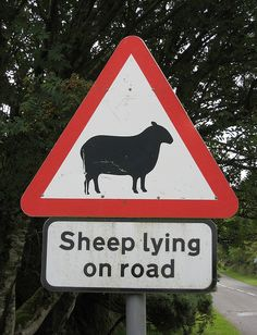 Irish Warning Sign. - Something we all like to see a surplus of possible yarn :) LOL