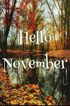 Hello November 7 weigh ins until xmas. I've been off for midterm break. Didnt get to a group because I was out of the. Hallo November, Welcome November, November Month, New Month, Sweet November, Seasons Months, Days And Months, Seasons Of The Year, Months In A Year
