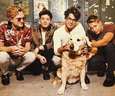 the vamps, tristan evans, and james mcvey image Brad The Vamps, Brad Simpson, New Hope Club, Maggie Lindemann, Reasons To Live, Pop Bands, Work Hard, Besties, Your Dog