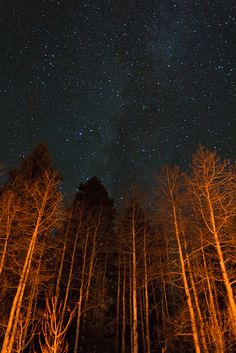 Stars, via Flickr.