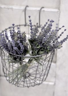 Love this basket.  Need loads to hand from towel rails, ladders etc