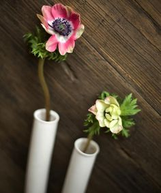 Test Tube Ceramic Wall Vase by Pigeon Toe Ceramics, Gardenista