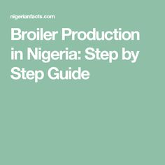 Broiler Production in Nigeria: Step by Step Guide
