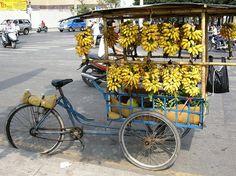 Bananas, Trade, Bicycle, Viet Nam, Fruit, Tropics
