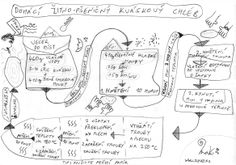 Plan-domaci-kvaskovy-chleb-Ze-vsi-MaK.jpg (2331×1632)