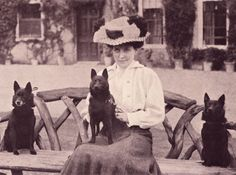 Schipperkes & Edwardian Lady sepia photo.  This is for you, Mary Lou!