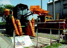 甘蔗採收機