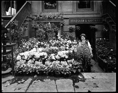 An Easter floral display at Bradshaw & Hartman, New York City, between 1900 and 1905, by Detroit Publishing Co., via Library of Congress Prints and Photographs Division (both photos). I found t…