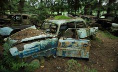 Cimetieres de voitures, Chatillon, Belgique,