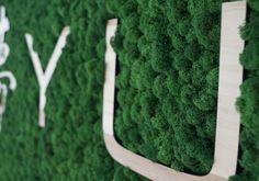 Logotyp firmy z mchu naturalnego MOSS TREND.  Ekologiczna identyfikacja graficzna. Zapraszamy do BandIt Design: www.banditdesign.pl