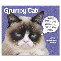 Grumpy Cat 2020 Desk Calendar - ACCO Brands - Spend your year with the cat that always looks annoyed. Funny Calendars, Desk Calendars, Cat Calendar, Calendar Pages, Irritated Quotes, Cat Years, Cat Coloring Page, What Activities, Family Organizer