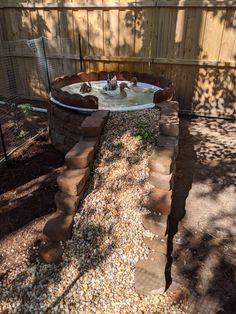 Backyard Ducks, Backyard Farming, Ponds Backyard, Chickens Backyard, Ankor, Garden Bathtub, Cute Chicken Coops, Backyard Chicken Coop Plans, Duck Farming