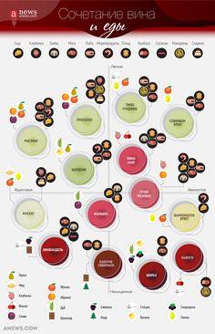 Как подобрать идеальное вино к различным блюдам. Инфографика - Anews