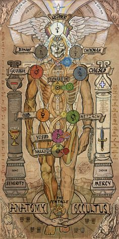 interesting illustration of Adam Qadmon, however, the Tree of Life maps on the back of Adam Qadmon, not the front. And Tiphareth I think maps to the Solar Plexus as well as the Heart, and Malkuth is at the feet. You can see my illustration at www.http://luminanti.com/tfkabaq.html CHUKART : Photo
