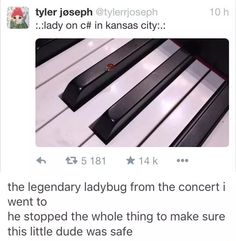 There was a ladybug in my chem class the other day but then my friend killed it