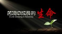 """Micro Film """"A Life Growing in Adversity"""""""