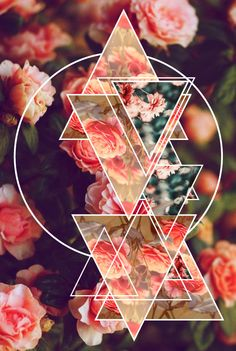 Geometric vintage flowers by Melle Mariette, via Behance