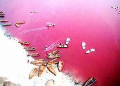 senegalese salt   Pink Hutt Lagoon, Australia (#2)