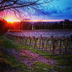 #tramontorosso #sundown #sunset #pordosol