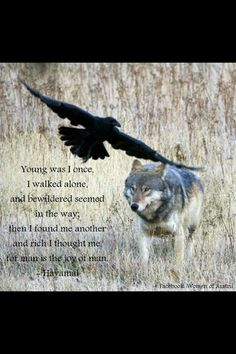 Sayings of the high one (Odin)