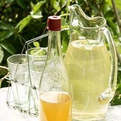 Sima Non Alcoholic Drinks, Fun Drinks, Rhubarb Recipes, Food To Make, Smoothies, Lemon, Food And Drink, Vegetarian, Baking