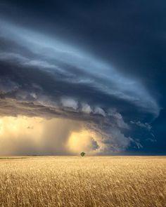 Sky Art in Saskatchewan Sky Art, Clouds, Celestial, Sunset, Nature, Outdoor, Instagram, Outdoors, Naturaleza