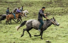 local Tibetans racing their horses Qinghai, China China, Racing, The Incredibles, Horses, Places, Pictures, Animals, Horse Racing, Travel Report