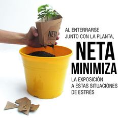 Al enterrarse junto con la planta NETA minimiza la exposición de esta a situaciones de estrés - ¿Por qué elegir #neta?