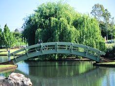 Japanese Gardens  Toowoomba, QLD, Australia