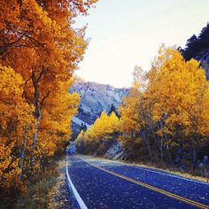 Where will your romantic fall getaway lead you? Photo courtesy of ravenreviews on Instagram.