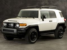 Toyota FJ Cruiser Trail Teams Edition; all TRD off-road equipment and suspension - next project, a leveling kit...