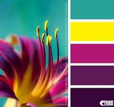 Summer colour palette, purple color combinations, bright color schemes, p. Colour Pallette, Color Palate, Colour Schemes, Color Combos, Color Patterns, Bright Color Palettes, Design Seeds, Color Stories, Color Swatches