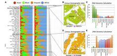 PathoMaps für die New Yorker U-Bahn: Mit Unterstützung des Human Genom Projects konnte das Team die ermittelten Erbgutspuren an den Stationen den jeweiligen Spezies zuordnen