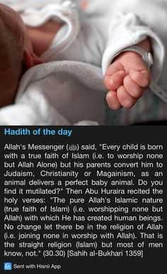 This is a Hadith to those who may be considering to reform Islam. The reasoning: why reform something that is already 'perfect'? Islam is far from perfect, it is flawed in many ways. Islam Beliefs, Islam Hadith, Islamic Teachings, Islam Religion, Islam Muslim, Islam Quran, Alhamdulillah, Islamic Prayer, Prophet Muhammad Quotes
