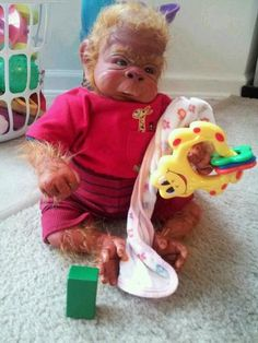 Reborn baby monkey by ball babies Monkey Doll, Cute Monkey, Reborn Doll Kits, Reborn Babies, Plastic Babies, Primates, Monkeys, Avatar, Weird