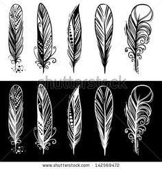 Artistically Painted Feathers On A White Background. Stock Vector Illustratie: 121275358 : Shutterstock