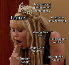 Taurus Memes, Zodiac Memes, Zodiac Facts, Taurus Traits, Taurus And Gemini, Who People, Fake People, Passive Aggressive People, Gemini People
